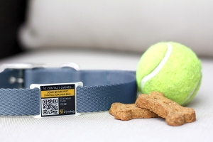 Blue Slider with tennis ball